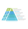pyramid infographics vector image vector image