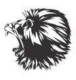 roaring lion head vector image