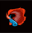 beta fish in flat color template vector image vector image