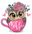 cartoon owl is sitting in a cup coffee vector image