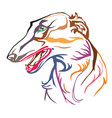 colorful decorative portrait of russian wolfhound vector image vector image