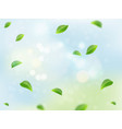 fresh green leaves on natural background vector image vector image
