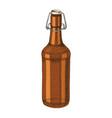 hand drawn beer bottle vector image