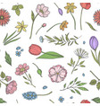 hand drawn flowers pattern or background vector image vector image