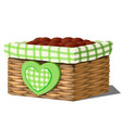 stylish flower pot in form a wicker basket vector image vector image