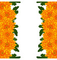 yellow mum chrysanthemum flower border vector image vector image