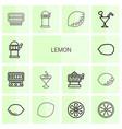 14 lemon icons vector image vector image