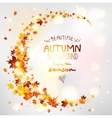 Beautiful autumn vector image vector image