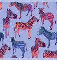graphic seamless pattern standing zebras drawn vector image vector image