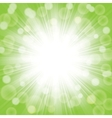 green sunlight vector image vector image