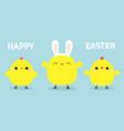 happy easter chicken bird set line face head vector image