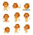 wild lion cartoon cute african big lions mascot vector image vector image