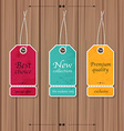 Collection of Sale Discount Vintage Banners on a vector image vector image
