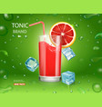 fresh grapefruits with juice vector image vector image
