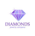 magic diamond with beautiful facets created by vector image vector image