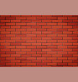 red brick wall texture closeup vector image