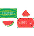 watermelon slices collage fresh summer fruit vector image vector image