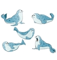 blue spotted seals vector image vector image