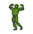 cactus man posing color sketch engraving vector image vector image