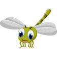 cute dragonfly cartoon vector image