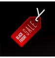 sale tag seasonal discount symbol vector image