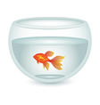 aquarium with gold fish vector image vector image