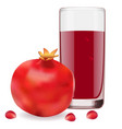 delicious juice from ripe pomegranate vector image vector image