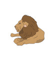 lion lies vector image vector image