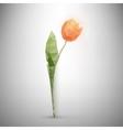 polygonal tulip vector image