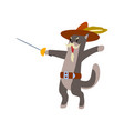 warlike musketeer cat character fighting with vector image vector image