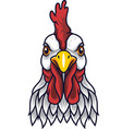 chicken rooster head mascot vector image