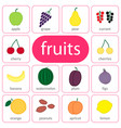 fruits and berries objects icons set isolated vector image