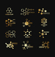 golden molecular logotypes evolution vector image