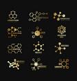 golden molecular logotypes evolution vector image vector image