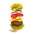hamburger flying ingredients vector image vector image