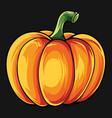 hand drawn pumpkin image vector image vector image