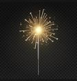 bengal light burning sparkler vector image vector image
