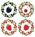 Berry Wreath Set vector image vector image