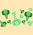 big and small green broccoli on beige background vector image vector image