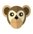 Breasted capuchin primate brazil fauna