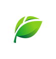 green leaf abstract logo vector image vector image