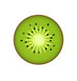 kiwi kiwi or chinese gooseberry with half cross vector image