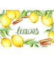 watercolor lemons and cinnamon vector image vector image