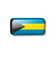 bahamas flag on a white vector image vector image