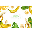 realistic banana frame composition vector image