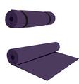 Yoga mat vector image vector image