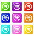 no flea sign icons 9 set vector image vector image