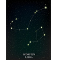 Scorpius and Libra constellation vector image vector image