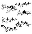 set of birds at tree branches silhouettes vector image vector image