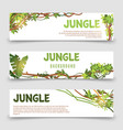 tropical plants banner jungle leaves and vector image vector image